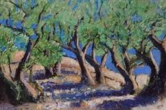 Marcel Kreuning - Olijfboomgaard in de Provence