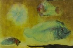Ru van Rossem - The beginning